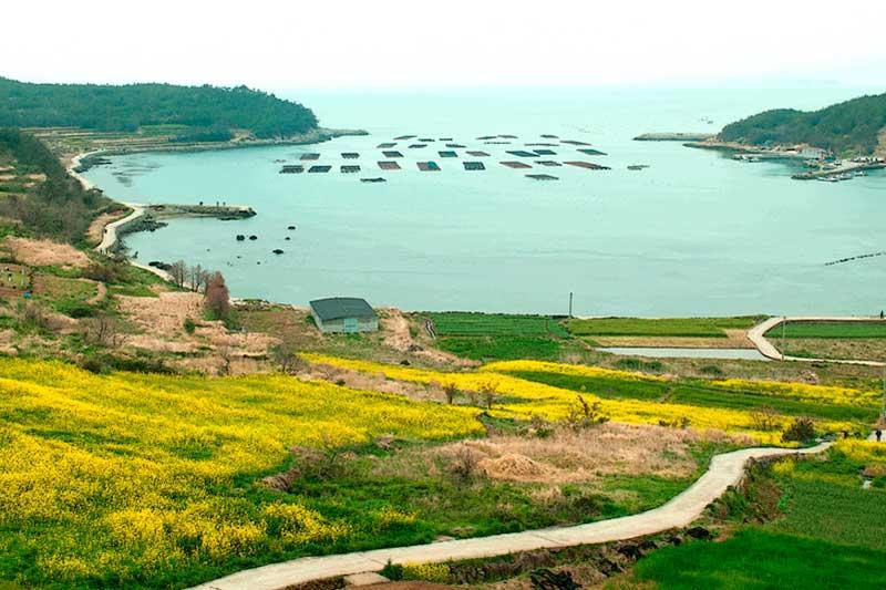 du lịch hàn quốc tự túc cheongsando