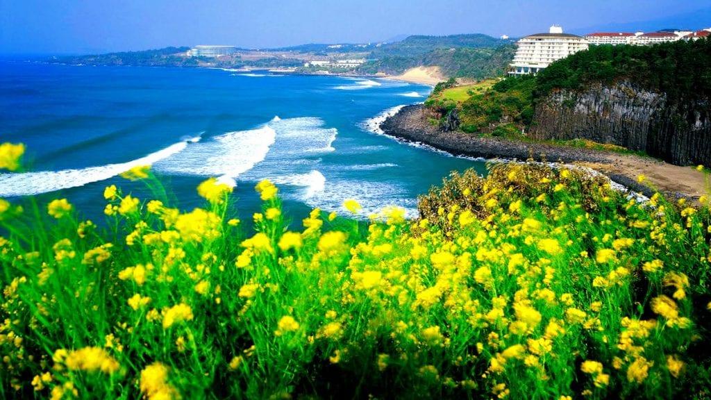 du lịch tự túc hàng quốc với đảo jeju