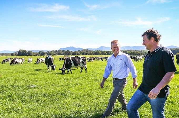 Loại sữa tươi nguyên kem nhập khẩu tự nhiên