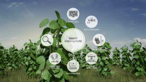 Nông nghiệp hiện đại ứng dụng IoT