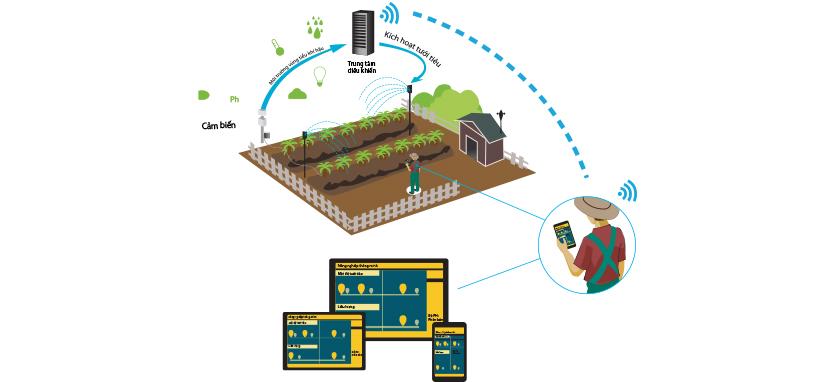 Mô hình nông nghiệp hiện đại